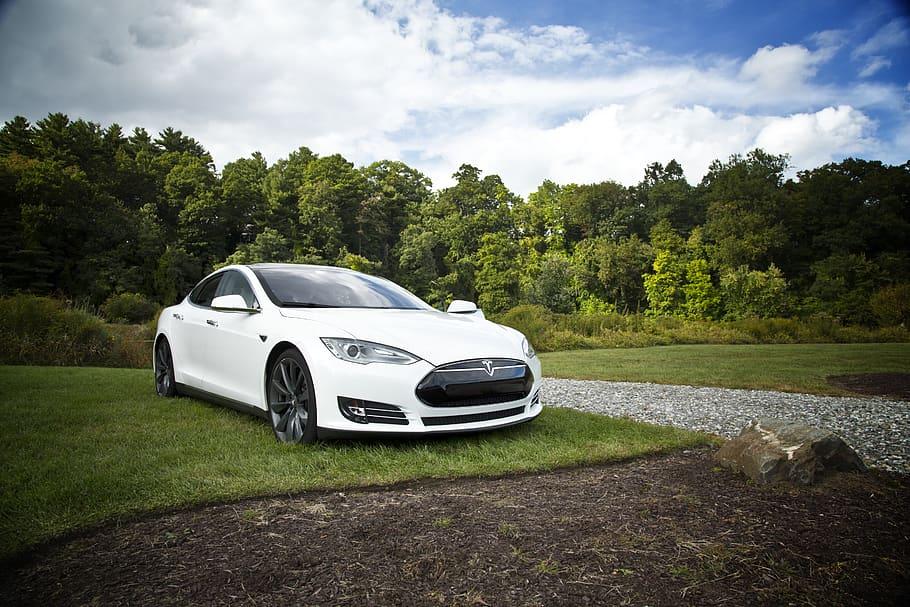 Auto elettriche conviene comprarle?