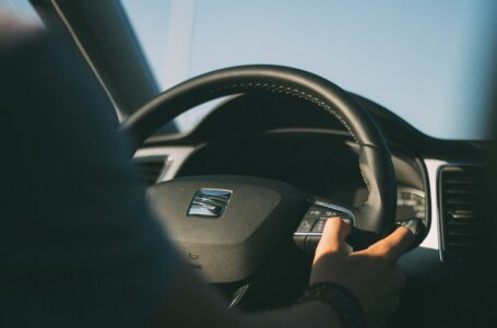 Sostenibilità: gli scarti del riso innovano l'automotive