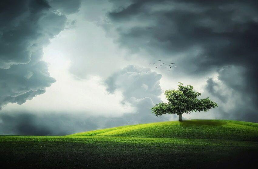 Migrare verso il cloud per una scelta sostenibile