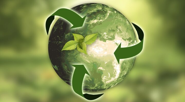 Sostenibilità e innovazione