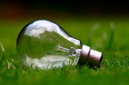 Sostenibilità e innovazione con GreenCoding e Act for the Future