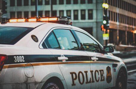Amped: la software house italiana che affianca la polizia americana nelle indagini