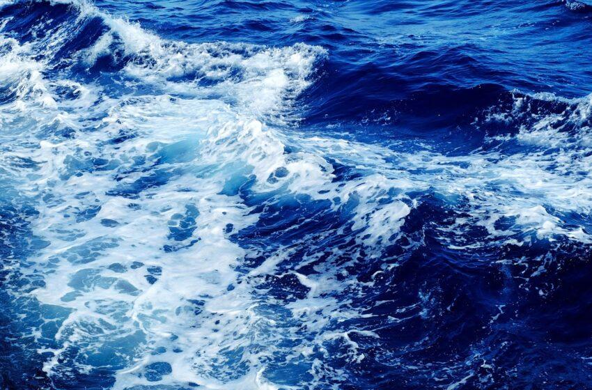 """MareDireFare un festival dedicato al """"grande blu"""" per celebrare l'avvio del Decennio degli Oceani"""
