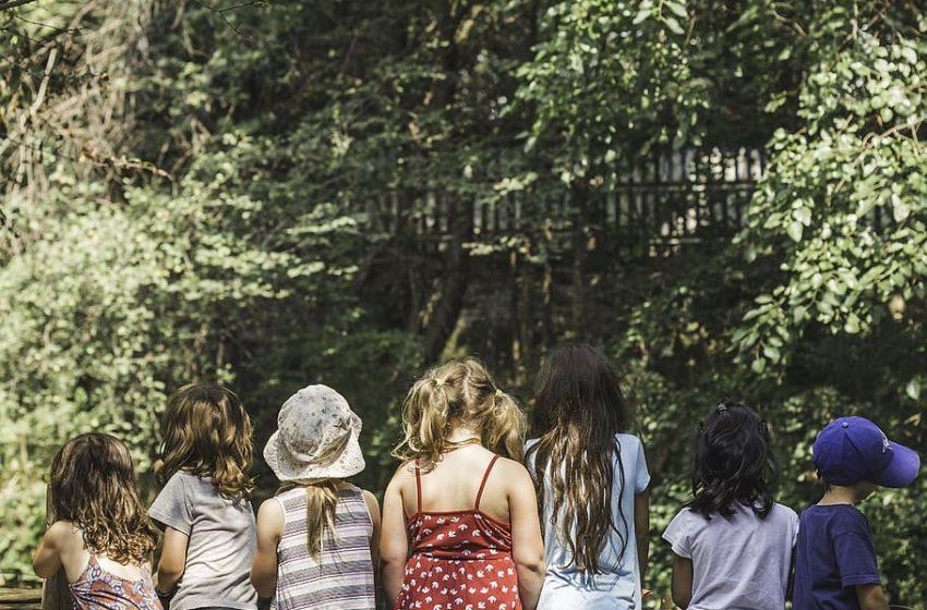 RiGenerazione Scuola, il mondo dell'istruzione punta sulla transizione ecologica