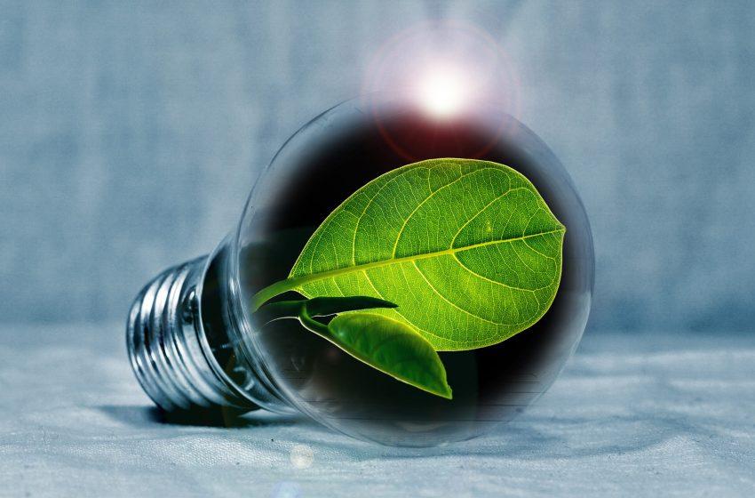 """Innovazione sostenibile, Ferrieri (ANGI): """"Grande opportunità per lo sviluppo dei territori"""""""