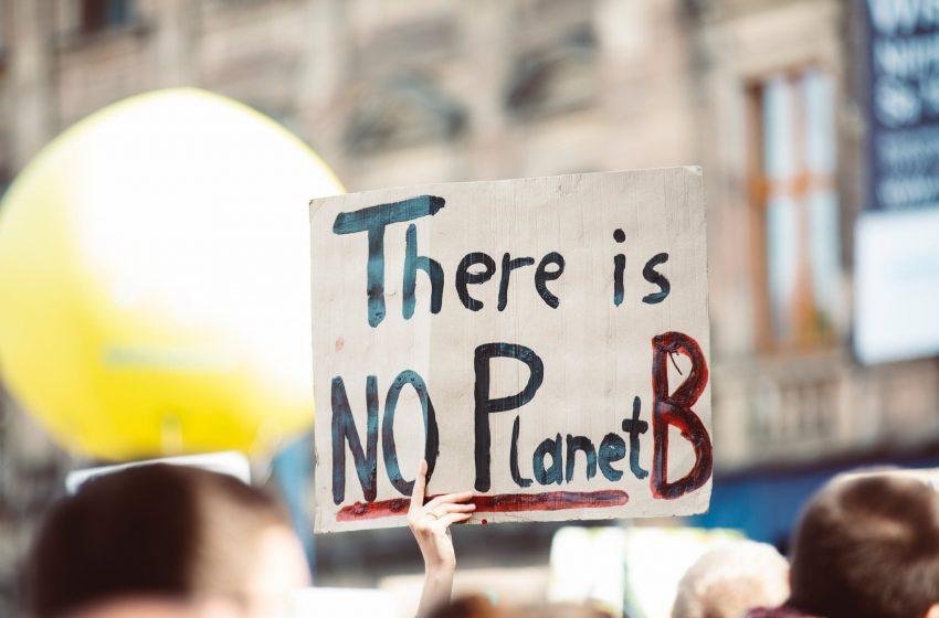 """Precop26, Ferrieri (ANGI): """"Voce ai giovani e priorità a investimenti sulla sostenibilità per lo Youth4Climate"""""""